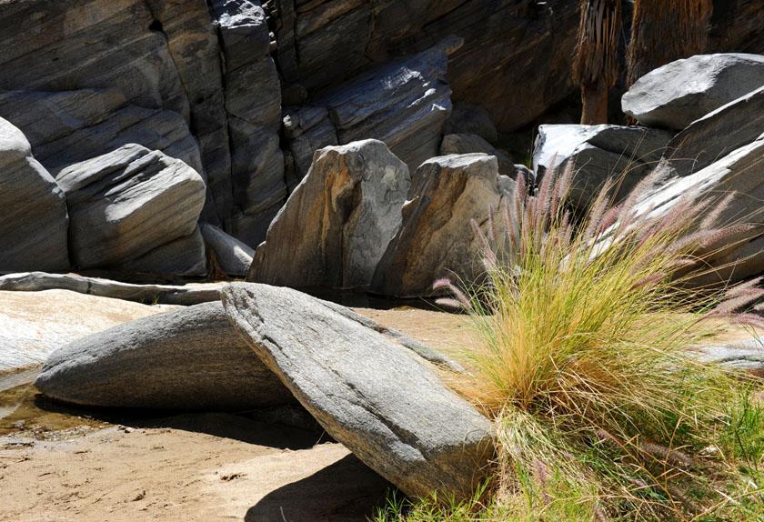 Subtelność traw wśród połamanych skał
