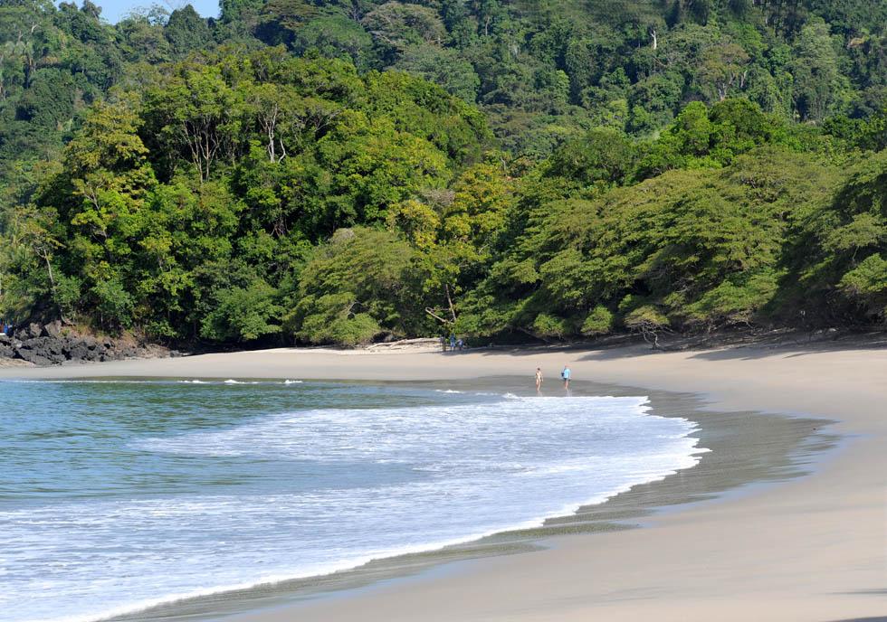 Jedna z dzikich plaż Parku Narodowego Manuel Antonio