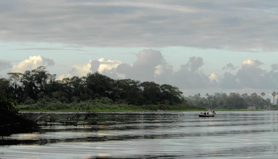 Brzegi rzeki Tortuguero