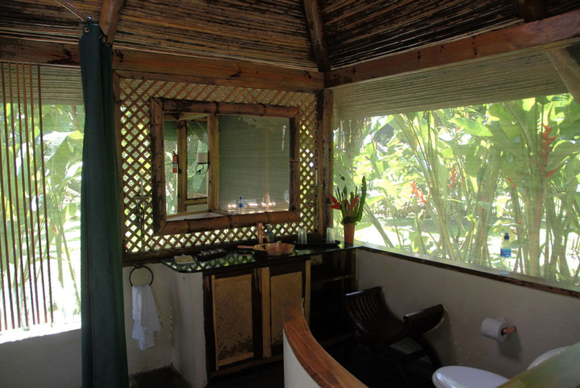 Toaleta w samym sercu dżungli.