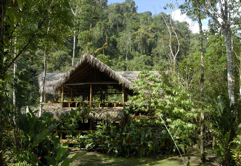 Zagubiona w dżungli Pacuare Lodge