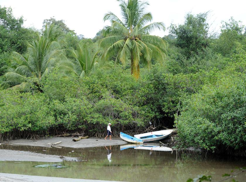 Samotny rybak na skraju dżungli