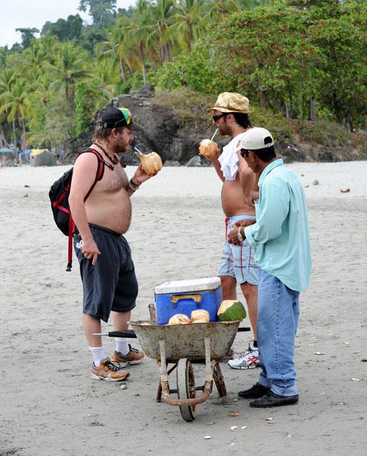 Kokosowy interes