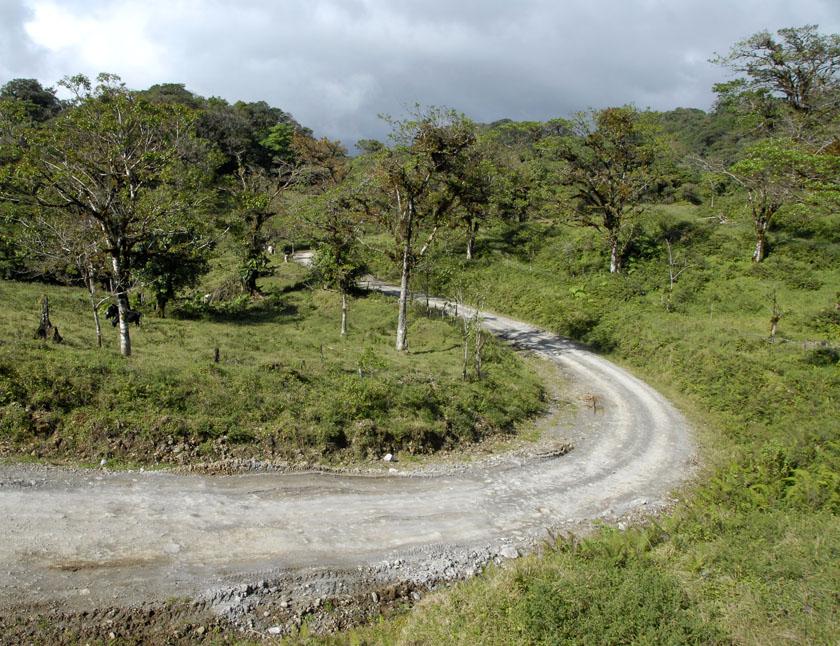 Droga do Monteverde