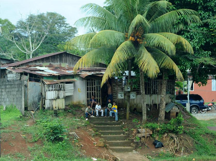 Przydrożny domek pod palmą