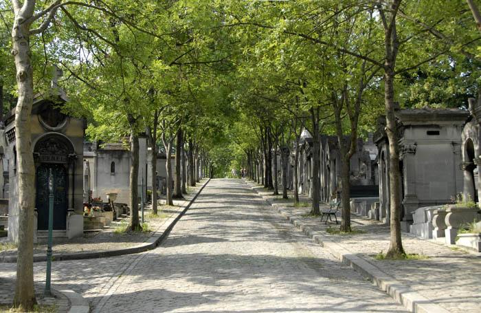 Cmentarne aleje, groby skąpane w zieleni