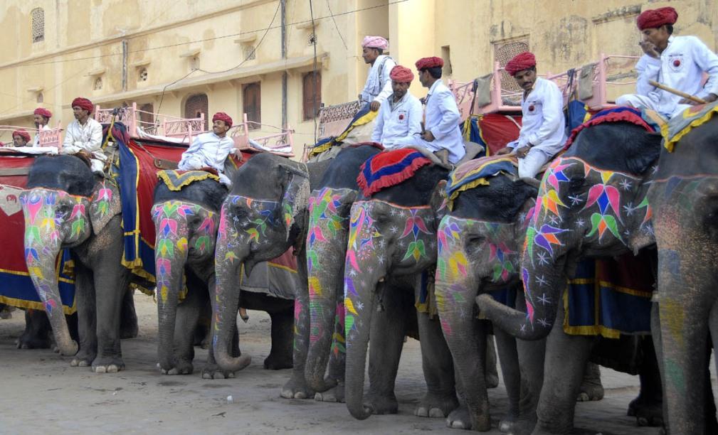 Elephant's true colors? (Jaipur)