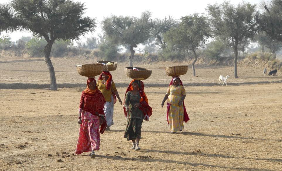 Wiejski transport - kobiety z Shekhawati