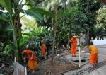 mnisi z Luang Prabang bp (24)