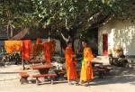 mnisi z Luang Prabang bp (37)