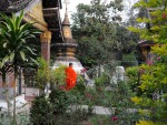 mnisi z Luang Prabang bp (38)