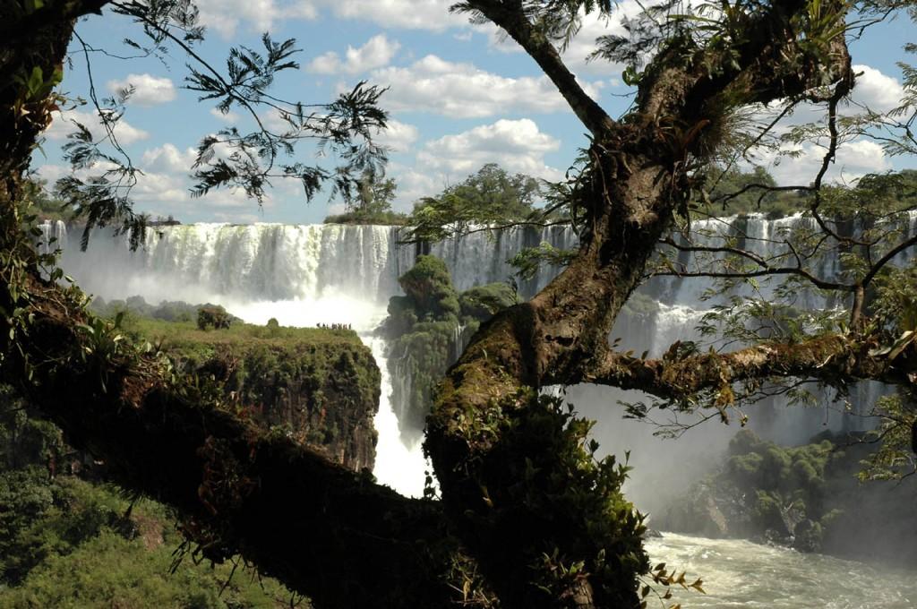 The Best of Iguasu (46)a