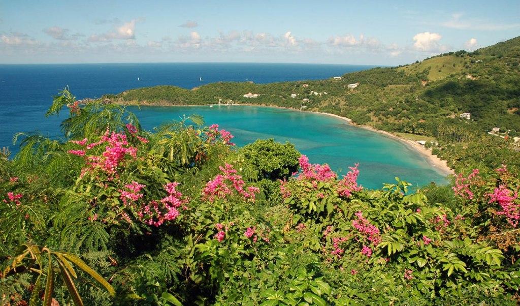 Virgin Island (19)