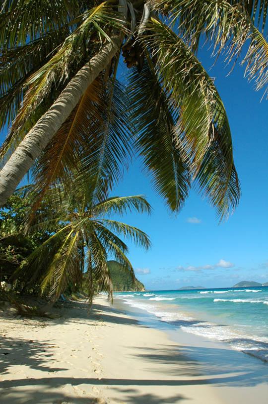 Virgin Island (21)