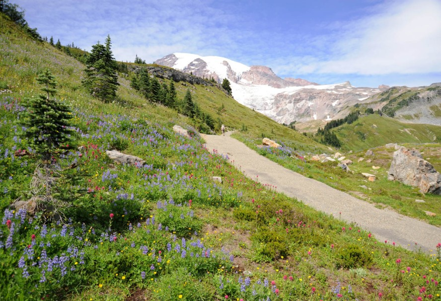 Mt. Rainier (19)