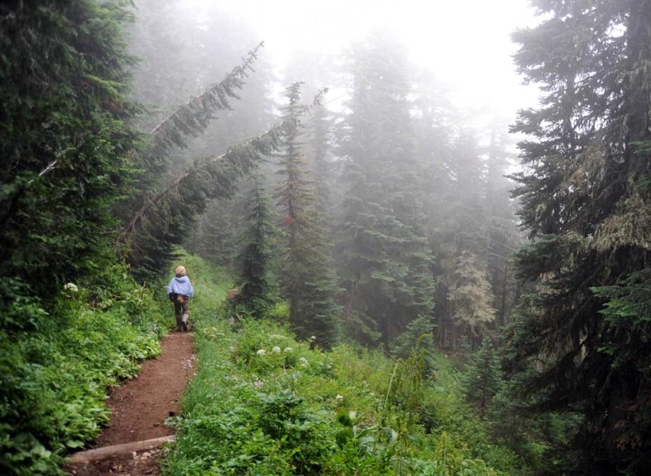 Mt. Rainier (52)