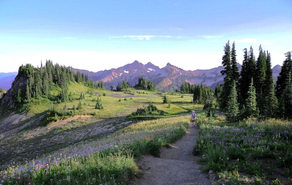 Mt. Rainier (53)