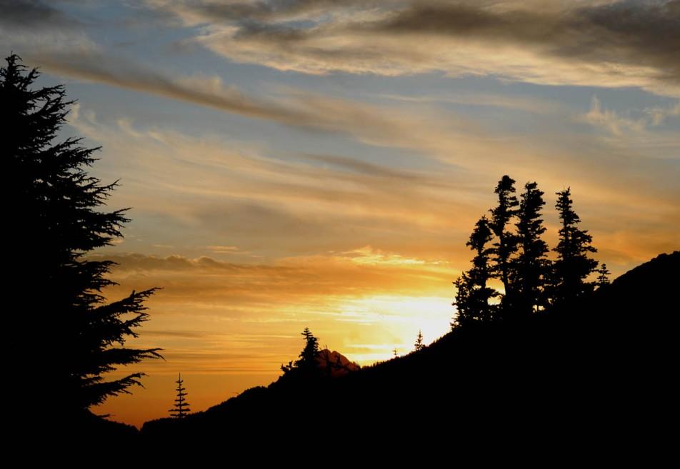 Mt. Rainier (56)