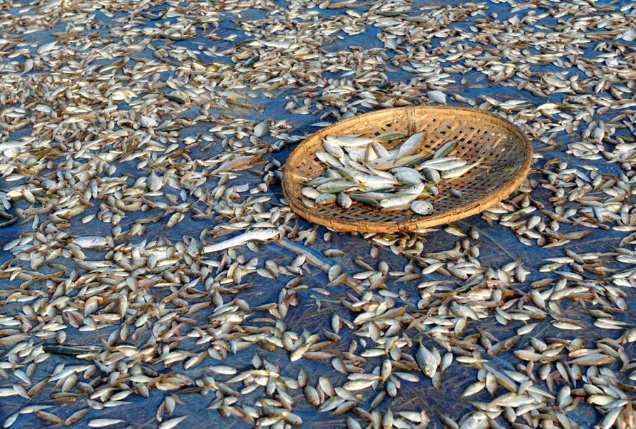 wioska rybacka - Birma fot. Stanislaw Blaszczyna (19)