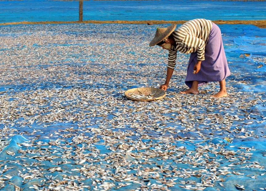 wioska rybacka - Birma fot. Stanislaw Blaszczyna (2)