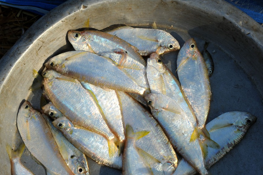 wioska rybacka - Birma fot. Stanislaw Blaszczyna (4)
