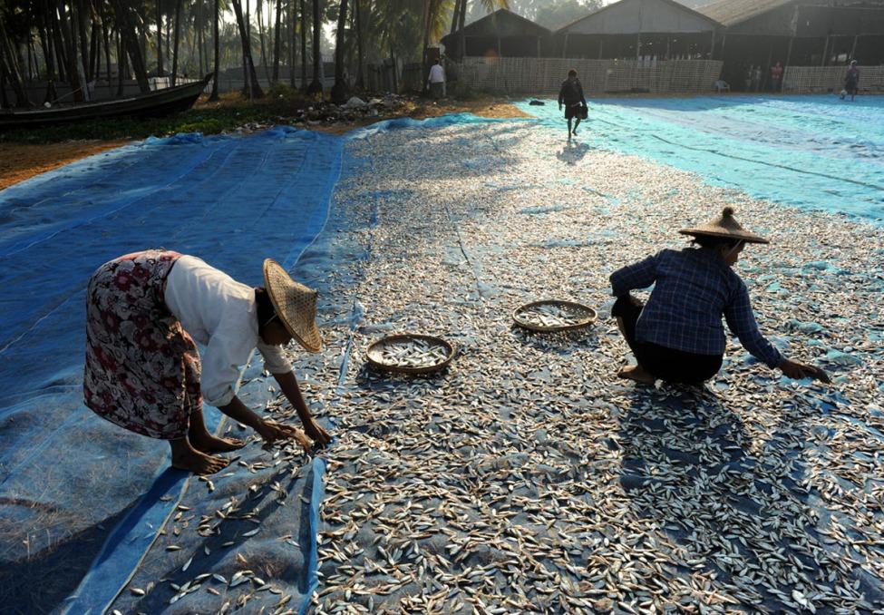 wioska rybacka - Birma fot. Stanislaw Blaszczyna (8)